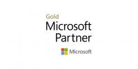 Microsoft Partner Icon